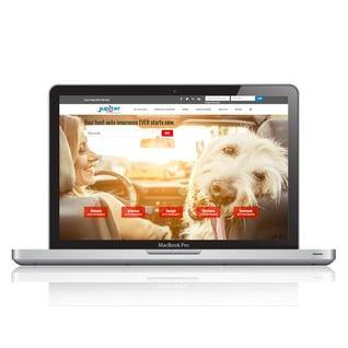 insurance-websites